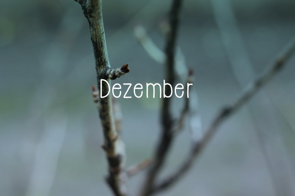 Dezember Lieblinge1