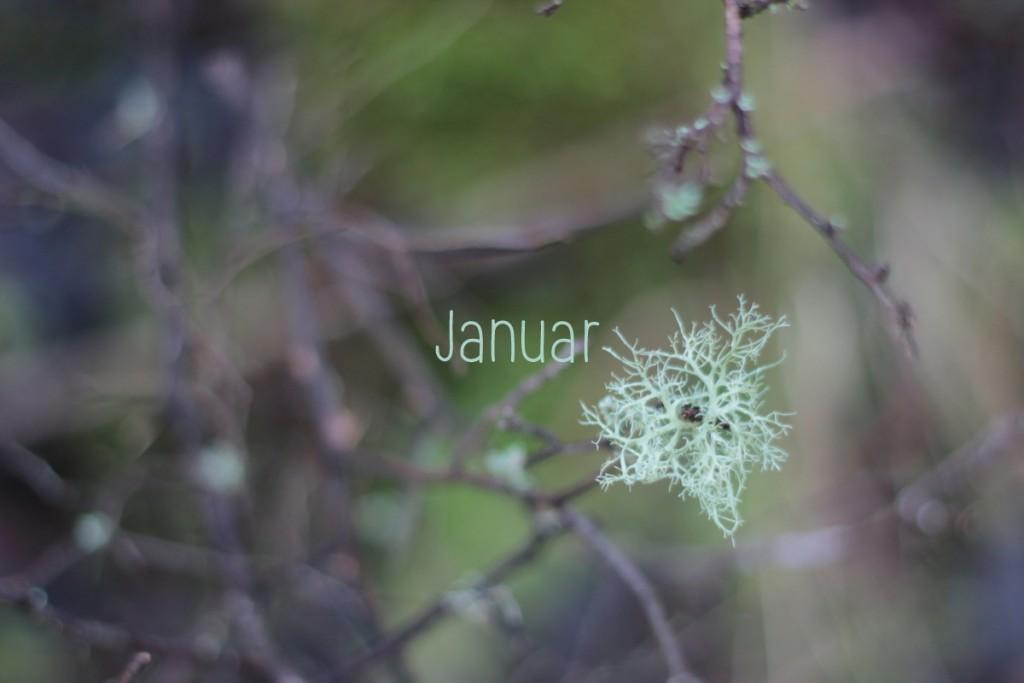 Januar1