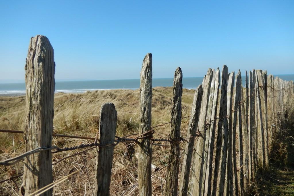 Brighton und North Devon (1)
