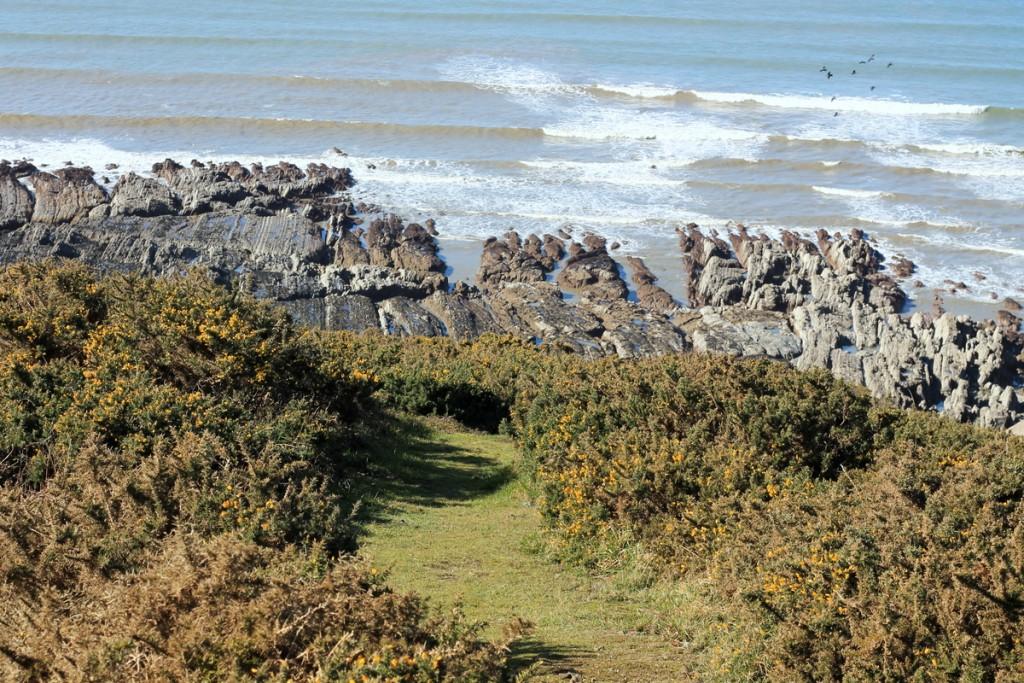 Brighton und North Devon (11)