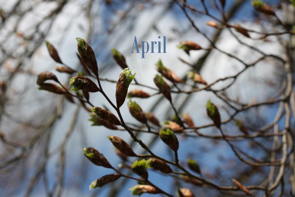 April Lieblinge 1