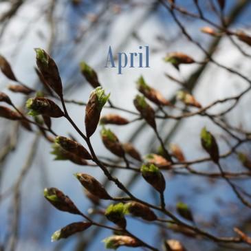 April Lieblinge