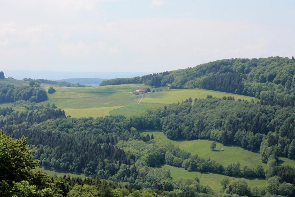 Milseburg (15)