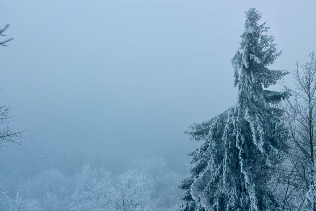 winterwonderland42