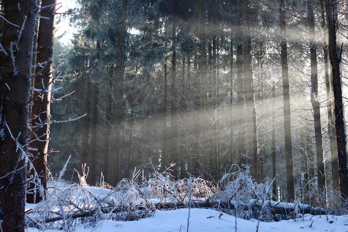 Winterwunderland Rhön 10