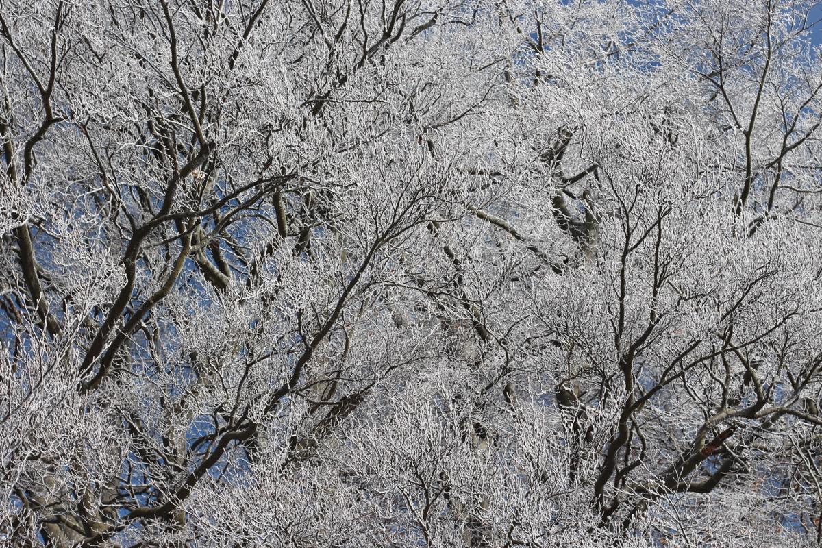 Winterwunderland Rhön 3