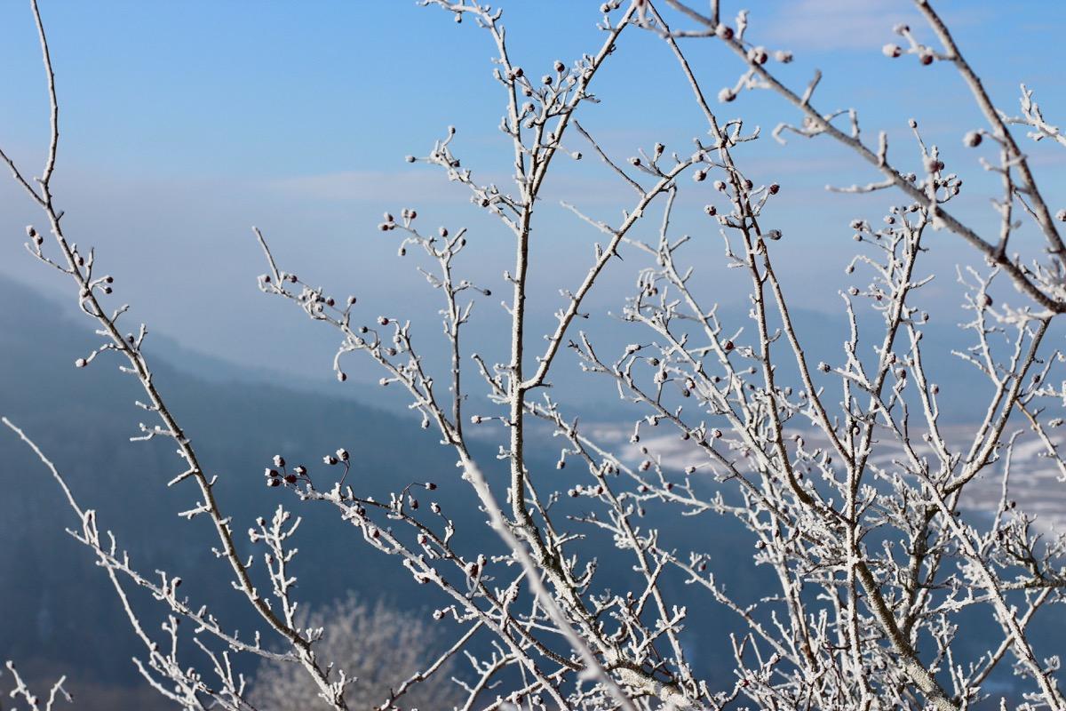 Winterwunderland Rhön 4