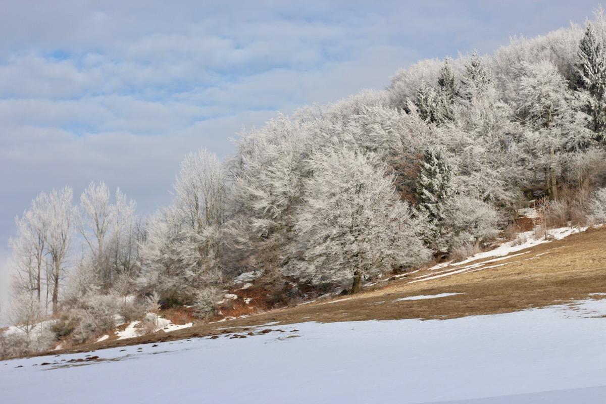Winterwunderland Rhön 8