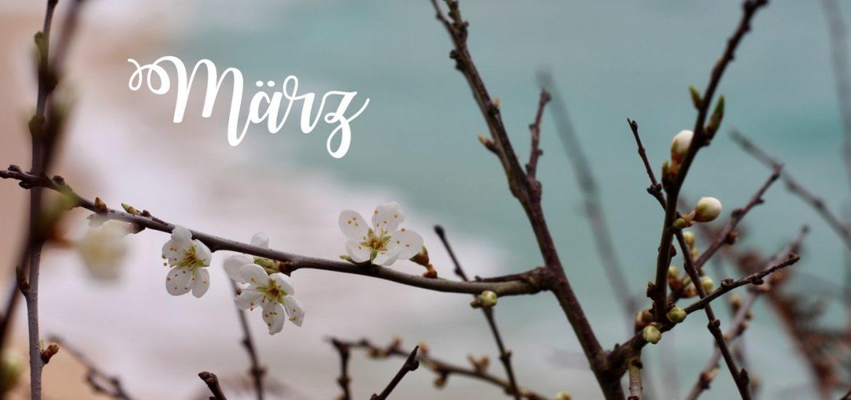 März Lieblinge