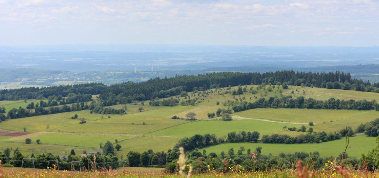 Vogelsberg – Wandern auf dem Vulkan | Unterwegs - rotköpfchen